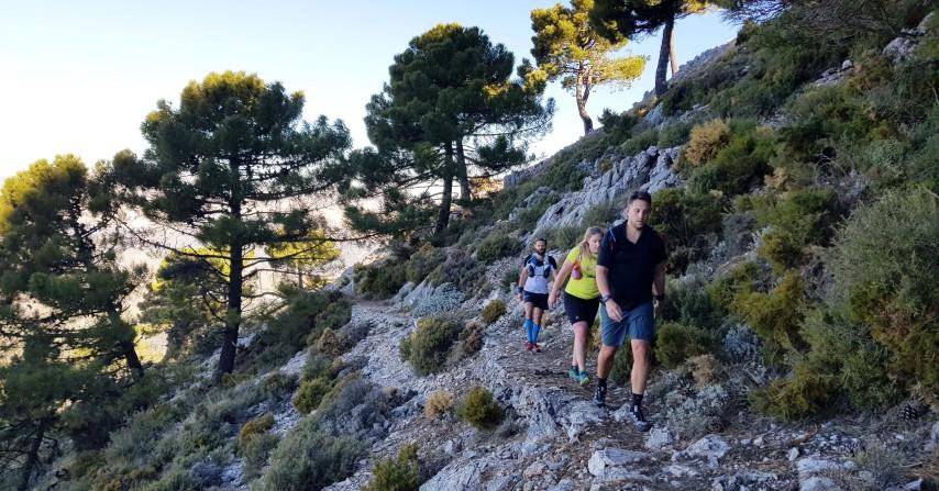 Loopwijzer trailrun vakantie Maroma peak