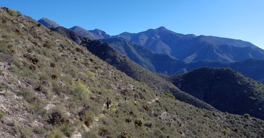 Trailrunning Andalucia Frigiliana
