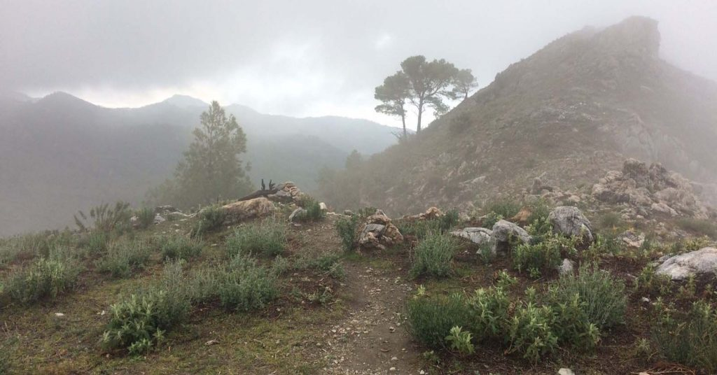 Loopwijzer trailrun vakantie Andalucia - Nerja